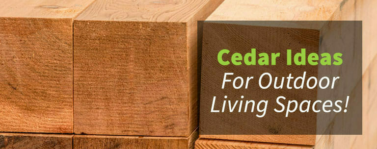 Cedar Living Space Ideas